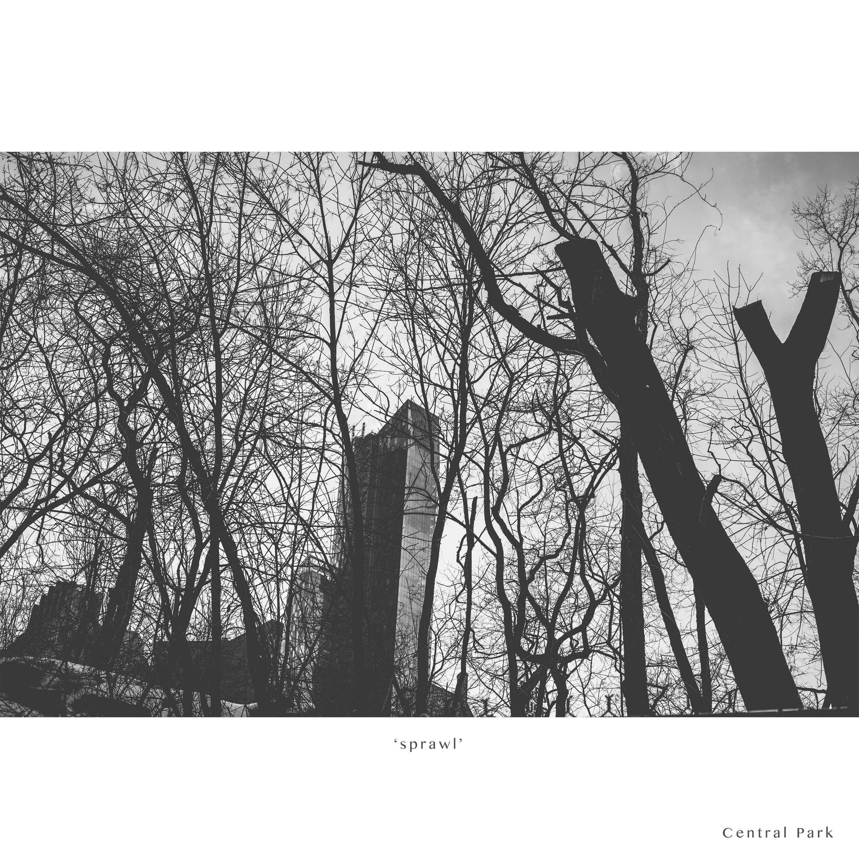 NYC 2014-19