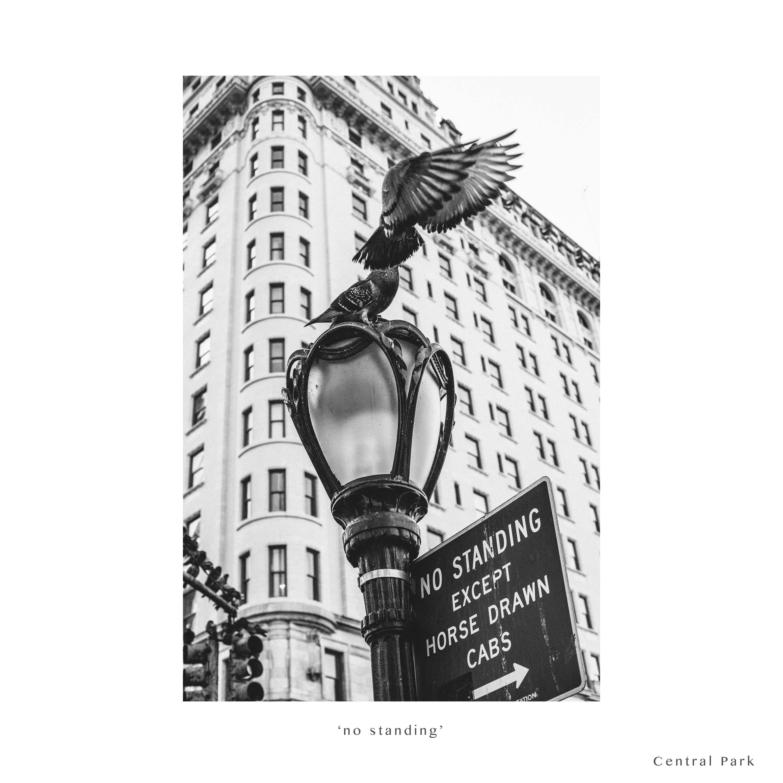 NYC 2014-3