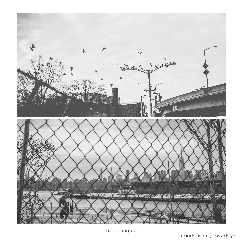 NYC 2014-5