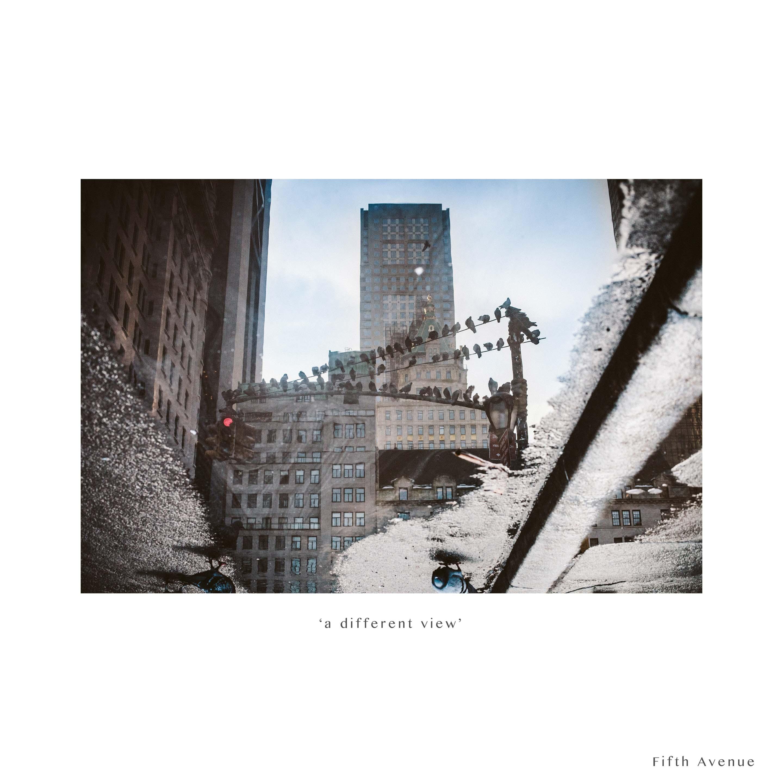NYC 2014-8